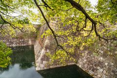 Backlit trees at the South Outer Moat -Osaka Castle Park in Japan. Beautiful backlit trees and reflections in the water at the South Outer Moat of Osaka Castle stock images