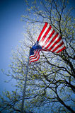 Backlit US Flag. A US flag, illuminated by the sun, billows in the wind Royalty Free Stock Photo