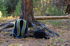 Backpack and bag on ground in  forest. Backpack and bag on ground in conifers forest Royalty Free Stock Image