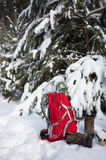 Backpack with boots under the tree Stock Image
