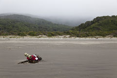Backpack lying in the beach at Chiloe national park. Royalty Free Stock Photos