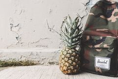 Backpack and pineapple