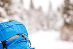 Backpack in the snowy forest. Close-up back view on the woman with blue backpack on the snowy forest background Royalty Free Stock Photography