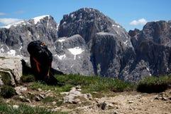 Backpack sul picco di montagna/nell'alta montagna della dolomia del fondo Immagini Stock Libere da Diritti