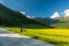 Backpacker που στο ειδυλλιακό τοπίο Θερινές περιπέτειες και εξερεύνηση στις Άλπεις, μέσω του ανθίζοντας λιβαδιού και της πράσινης Στοκ Φωτογραφία