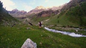 Backpacker που στο ειδυλλιακό τοπίο Θερινές περιπέτειες και εξερεύνηση στις Άλπεις, μέσω του ανθίζοντας λιβαδιού και της πράσινης φιλμ μικρού μήκους