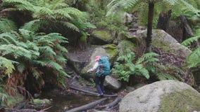 Backpacker στο δάσος απόθεμα βίντεο