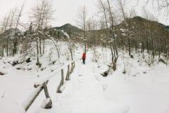 Backpacker девушки идя на мост над замороженным рекой в w Стоковые Фотографии RF