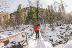 Backpacker девушки идя на мост над замороженным рекой в w Стоковое Изображение RF