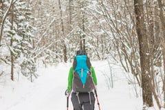 Backpacker девушки идя на дорогу леса в лесе зимы внутри Стоковые Фотографии RF
