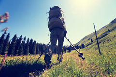 Backpacker женщины на горной тропе леса Стоковое фото RF