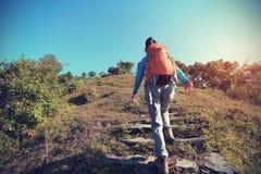 Backpacker женщины trekking на горном пике Стоковая Фотография
