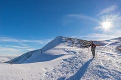 Backpacker женщины trekking на снеге на Альпах Вид сзади, образ жизни зимы, холодное чувство, звезда солнца в backlight Стоковые Фото