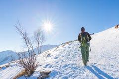 Backpacker женщины trekking на снеге на Альпах Вид сзади, образ жизни зимы, холодное чувство, звезда солнца в backlight Стоковое Изображение