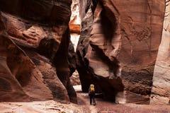 Backpacker каньона стоковые изображения rf