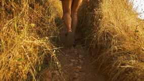 Backpacker de la mujer joven que anima en el pico de montaña de la playa de la salida del sol metrajes