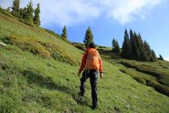 Backpacker de la mujer que camina en rastro hermoso del pico de montaña Imagen de archivo libre de regalías