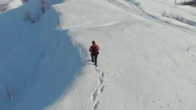 Backpacker die op sneeuwberg lopen in de winter Mens met rugzaktrekking in bergen De winter wandeling stock footage