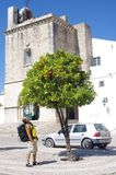 Backpacker die oranje boom op een stads historisch vierkant bekijken royalty-vrije stock foto's