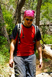 Backpacker in the forest Royalty Free Stock Images
