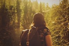 Backpacker in forest
