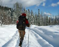 Backpacker going up of winter royalty free stock photos