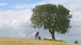 Backpacker having rest under green tree, active lifestyle, tourism, vacation. Stock footage stock footage