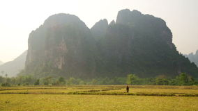 Backpacker heaven,Vang Vieng with limestone mountains,Laos. Day time stock video