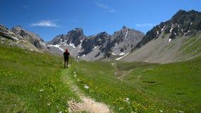 Backpacker hiking in idyllic landscape. stock video