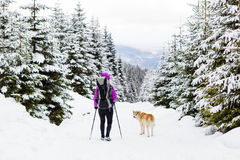 Backpacker hiking walking in winter forest with dog Royalty Free Stock Photo