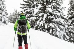 Backpacker hiking in white winter snowy forest royalty free stock photo