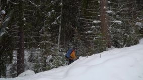 Backpacker hiking in winter forest stock footage