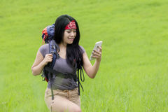 Backpacker looking at smartphone on meadow Royalty Free Stock Image