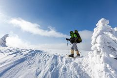 Backpacker man walking in winter mountains on sunny day Stock Image