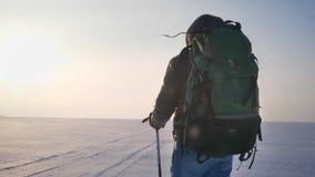 Backpacker masculino del retrato posterior con los palillos de la montaña y el bolso enorme que camina a lo largo del campo nevos metrajes
