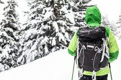 Backpacker na zimy podwyżce w białych śnieżnych drewnach fotografia royalty free