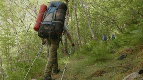 Backpacker in Norway stock video