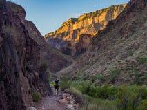 Backpacker op Sleep in Grand Canyon, Zonlicht op Klippen stock foto's