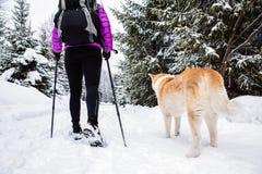 Backpacker que camina caminar en bosque del invierno con el perro imagen de archivo libre de regalías