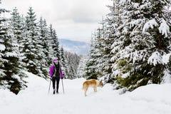 Backpacker que camina caminar en bosque del invierno con el perro imágenes de archivo libres de regalías