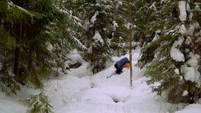Backpacker que camina en bosque del invierno metrajes