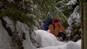 Backpacker que camina en bosque del invierno almacen de video