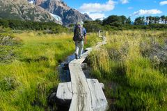 Patagonia trekking path through swamp. Backpacker tourist on Patagonia trekking path through swamp, Patagonia, South America, Chile Stock Photography