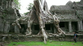 Backpacker travels exotic preah khan temple, angkor, cambodia stock video