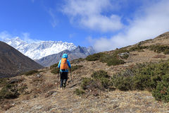 Backpacker trekking on himalaya mountains Royalty Free Stock Image