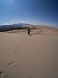 Backpacker Treks Along Sand Dune at Great Sand Dunes National Pa Royalty Free Stock Photography