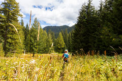Backpacker walking high grass meadow. Royalty Free Stock Image