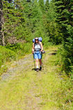 Backpacker on a Wilderness Trail Royalty Free Stock Photo