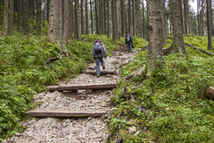 Backpacker women on mountain path - Tatra, Poland. Royalty Free Stock Image