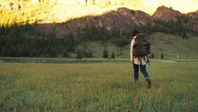 Hiker backpacker girl walking on the green field stock footage